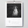 Jak zaprojektować fotokalendarz – piękny prezent z własnych zdjęć